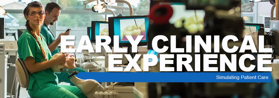 Early Clinical Experience